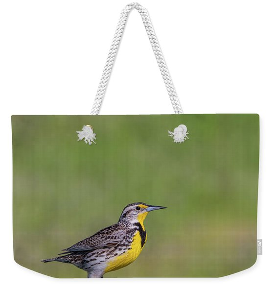Weekender Tote Bag featuring the photograph B39 by Joshua Able's Wildlife