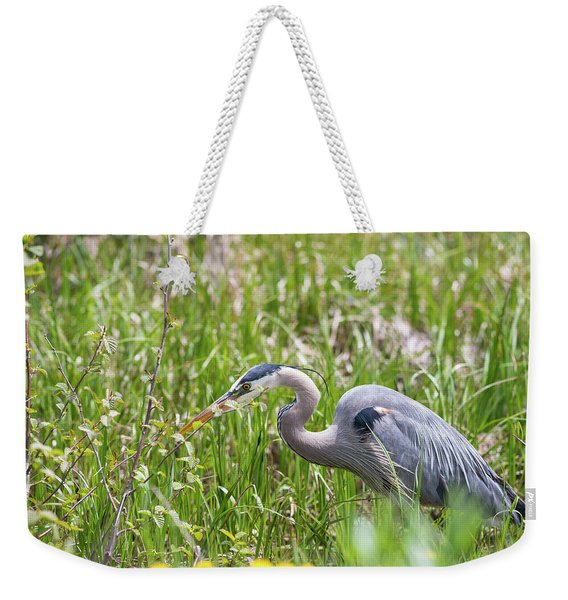 Weekender Tote Bag featuring the photograph B40 by Joshua Able's Wildlife