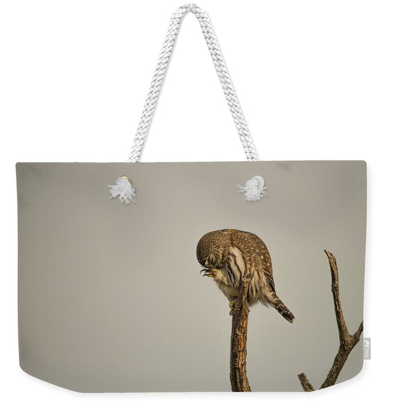 Weekender Tote Bag featuring the photograph B41 by Joshua Able's Wildlife