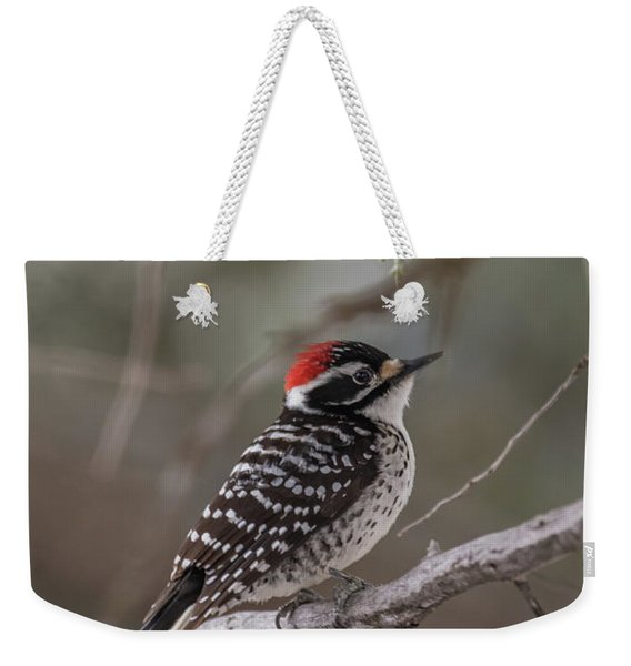 Weekender Tote Bag featuring the photograph B42 by Joshua Able's Wildlife