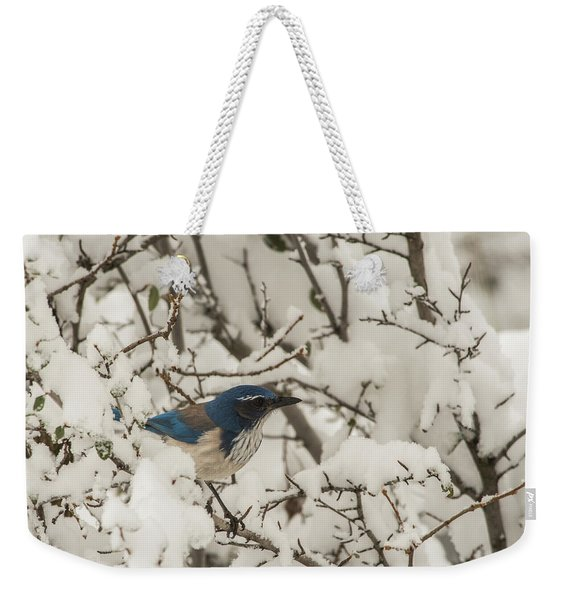 Weekender Tote Bag featuring the photograph B44 by Joshua Able's Wildlife