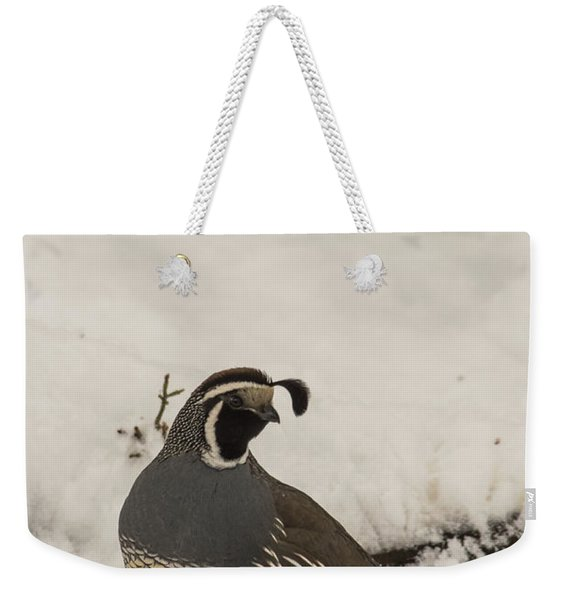 Weekender Tote Bag featuring the photograph B45 by Joshua Able's Wildlife