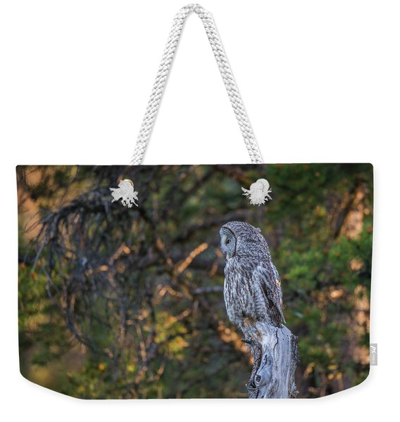 Weekender Tote Bag featuring the photograph B46 by Joshua Able's Wildlife