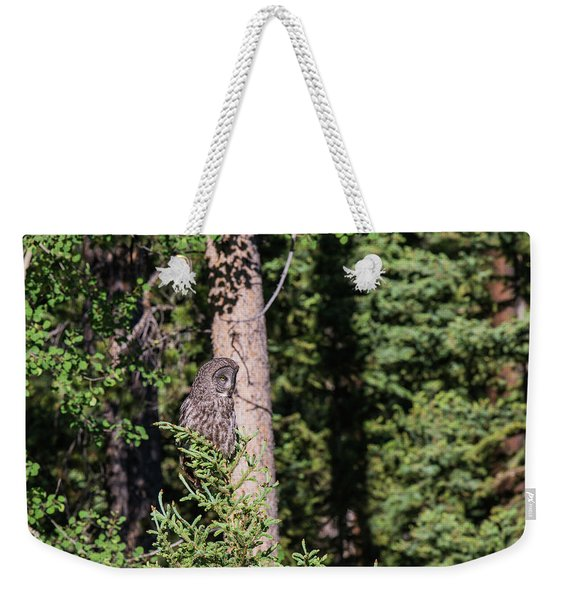 Weekender Tote Bag featuring the photograph B50 by Joshua Able's Wildlife