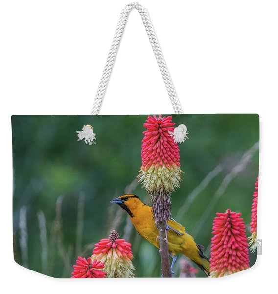 Weekender Tote Bag featuring the photograph B56 by Joshua Able's Wildlife