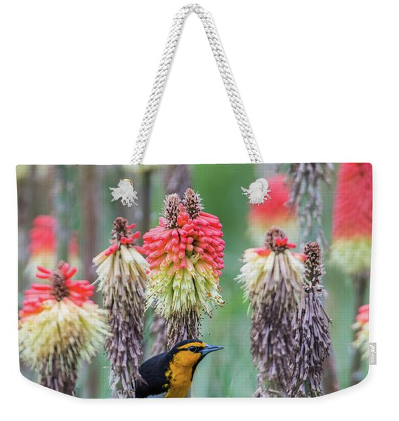 Weekender Tote Bag featuring the photograph B58 by Joshua Able's Wildlife