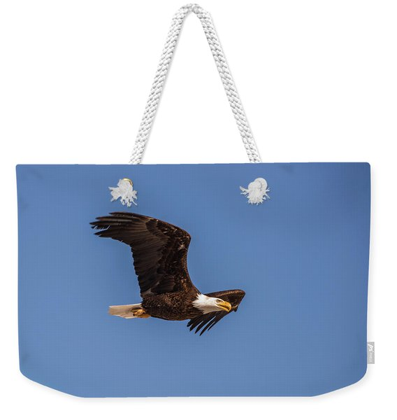 Weekender Tote Bag featuring the photograph B8 by Joshua Able's Wildlife