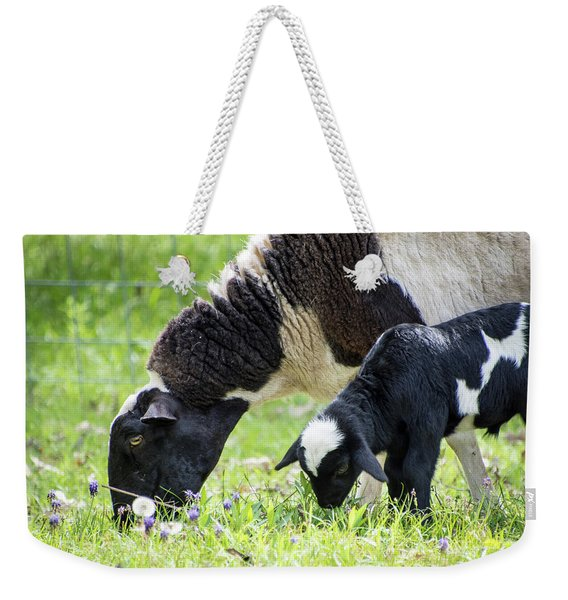 Baba And Pepe Grazing Weekender Tote Bag