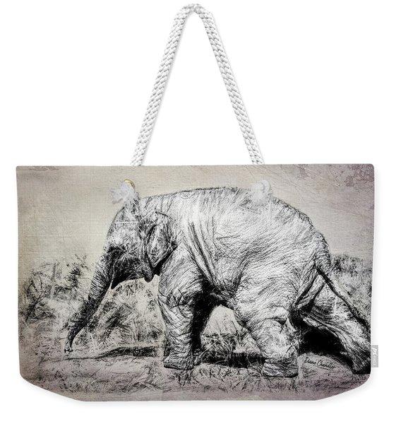 Baby Elephant Walk Weekender Tote Bag