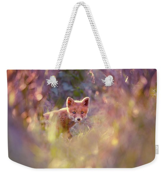 Baby Fox In A Fairytale Forest Weekender Tote Bag