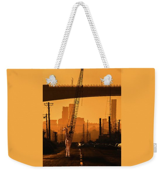 Weekender Tote Bag featuring the photograph Baby Giraffe In The Urban Jungle. by Rob D Imagery