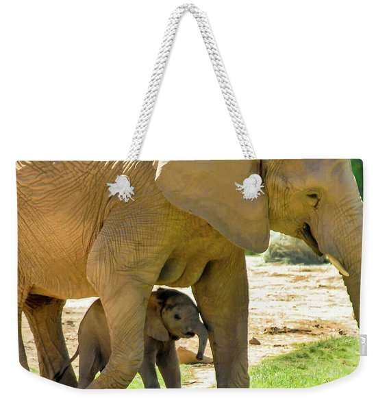 Baby's Safe House Weekender Tote Bag