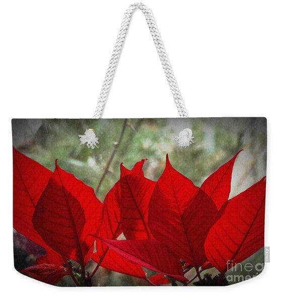 Backlit Poinsettias  Weekender Tote Bag