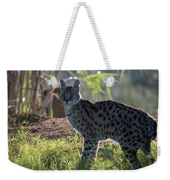 Backlit Serval Weekender Tote Bag