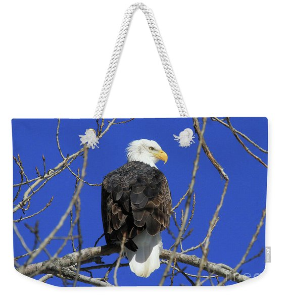 Bald Eagle And Blue Sky Weekender Tote Bag