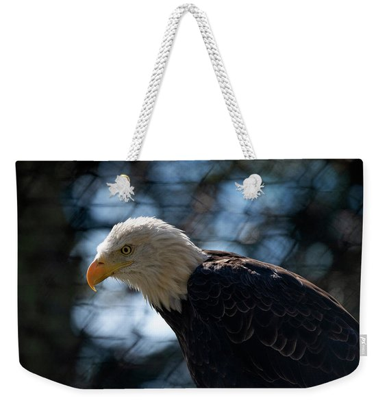 Bald Eagle Grandfather Mountain Weekender Tote Bag