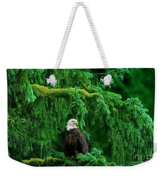 Bald Eagle In Temperate Rainforest Alaska Endangered Species Weekender Tote Bag