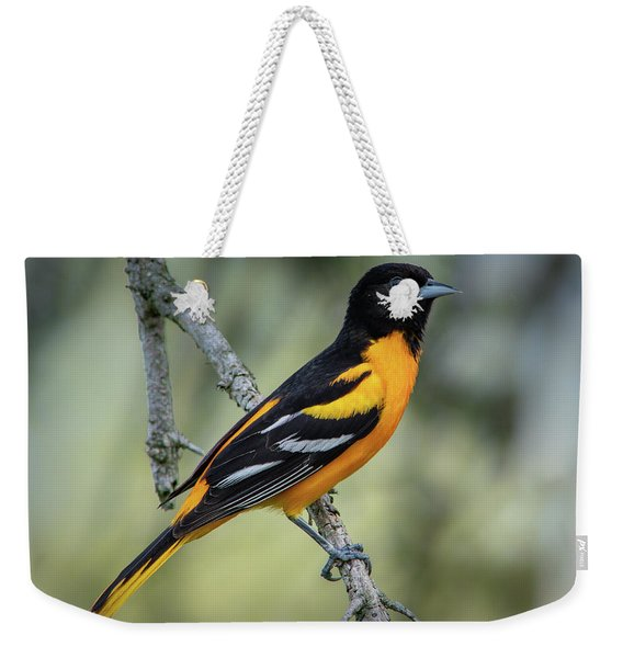 Baltimore Oriole Weekender Tote Bag