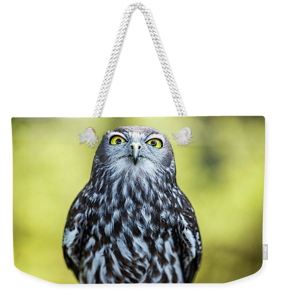 Weekender Tote Bag featuring the photograph Barking Owl by Rob D Imagery
