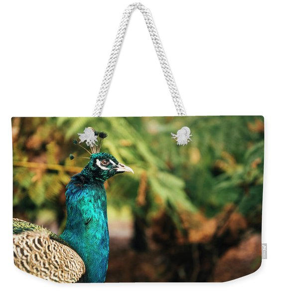Beautiful Colourful Peacock Outdoors In The Daytime. Weekender Tote Bag
