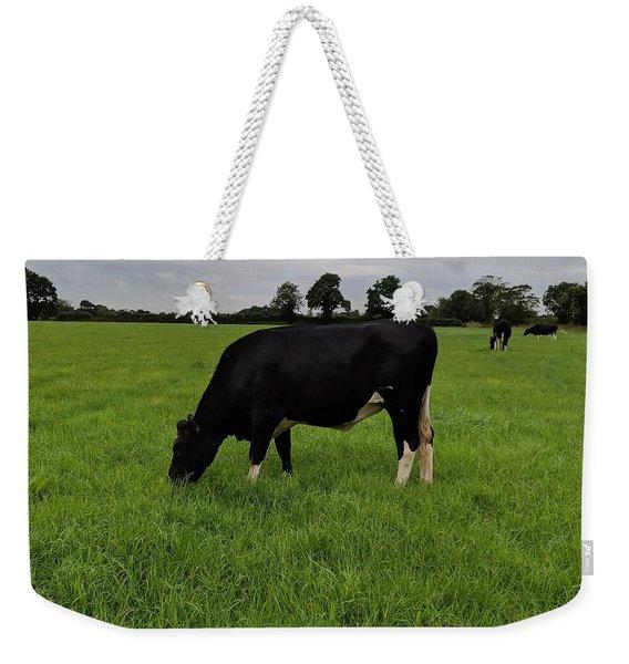 Beautiful Dairy Heifer Weekender Tote Bag