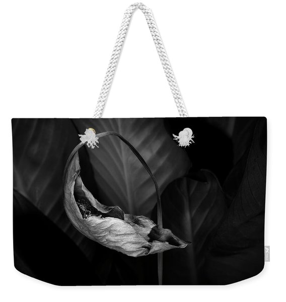 Beautiful Decay Weekender Tote Bag