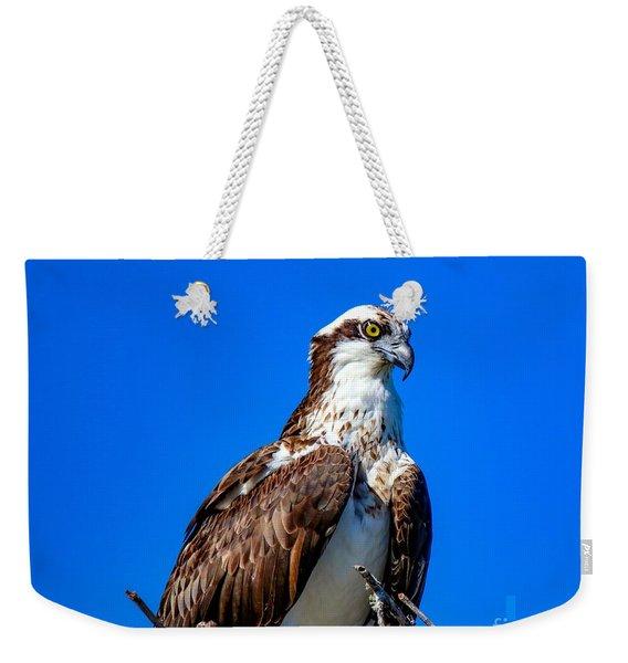 Beautiful Osprey Weekender Tote Bag