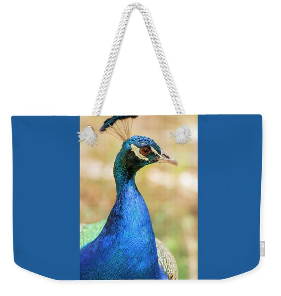 Weekender Tote Bag featuring the photograph Beautiful Peacock by Rob D Imagery