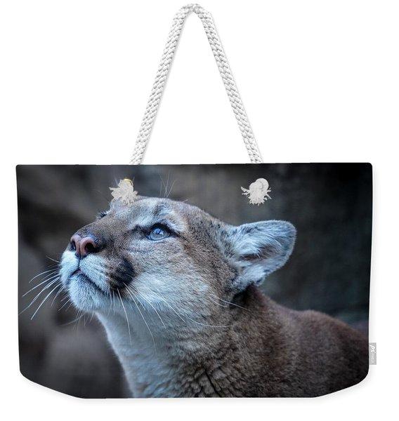 Beautiful Puma Weekender Tote Bag