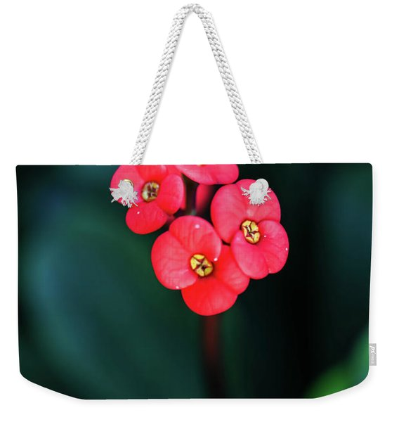 Beautiful Summer Flowers Weekender Tote Bag