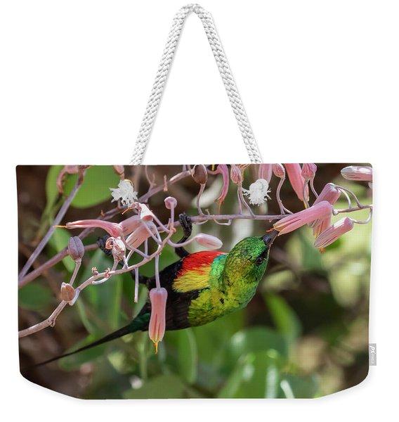 Beautiful Sunbird Weekender Tote Bag