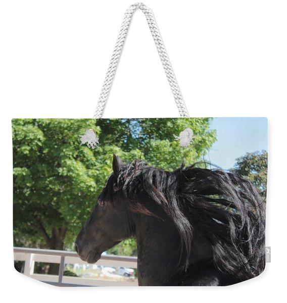 Beauty In Motion Weekender Tote Bag