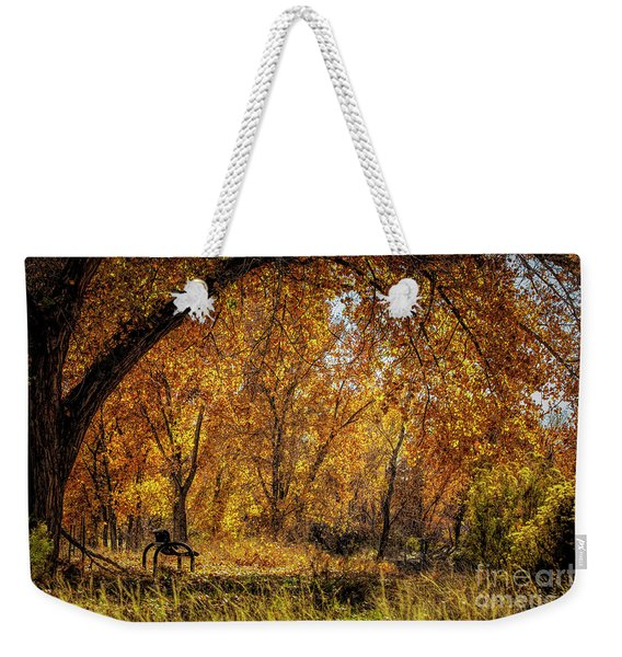 Bench With Autumn Leaves  Weekender Tote Bag