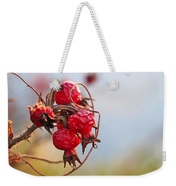 Between Summer And Winter Weekender Tote Bag