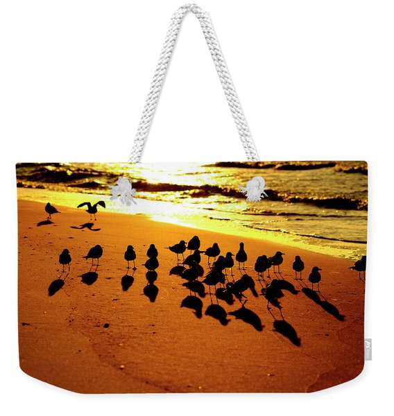Bird Shadows Weekender Tote Bag