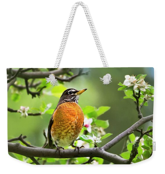 Birds - American Robin - Nature's Alarm Clock Weekender Tote Bag