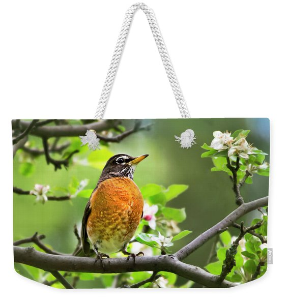 Birds - American Robin - Nature's Alarm Clock Weekender Tote Bag