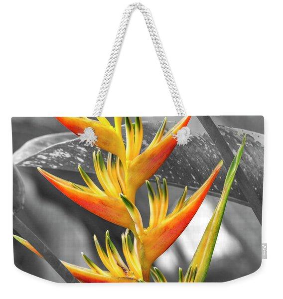 Birds Of Costa Rica Paradise Bloom Weekender Tote Bag