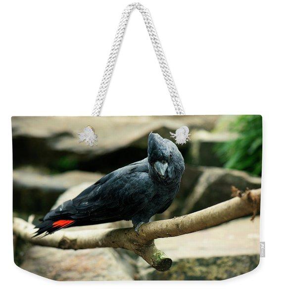 Black And Red Cockatoo. Weekender Tote Bag