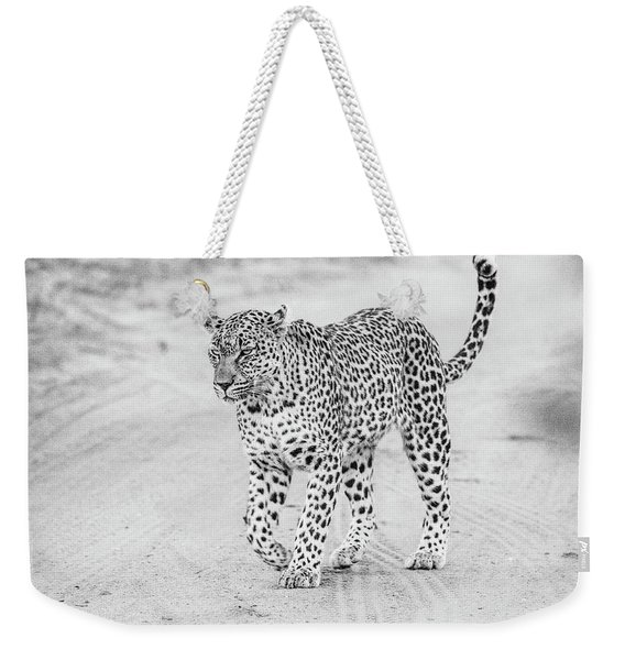 Black And White Leopard Walking On A Road Weekender Tote Bag