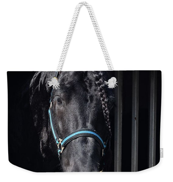 Weekender Tote Bag featuring the photograph Black Beauty by Robin Zygelman