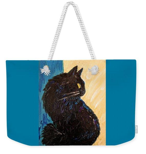 Black Cat In Sunlight Weekender Tote Bag