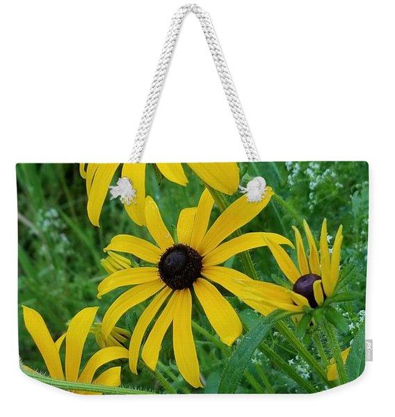 Black Eyed Susans 1 Weekender Tote Bag