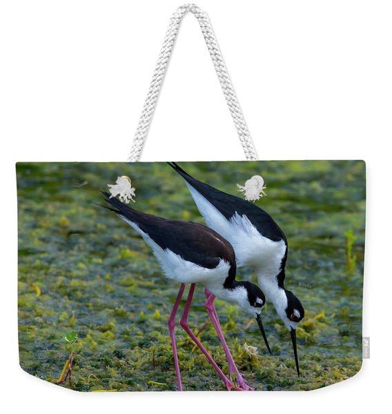 Black-necked Stilts Weekender Tote Bag
