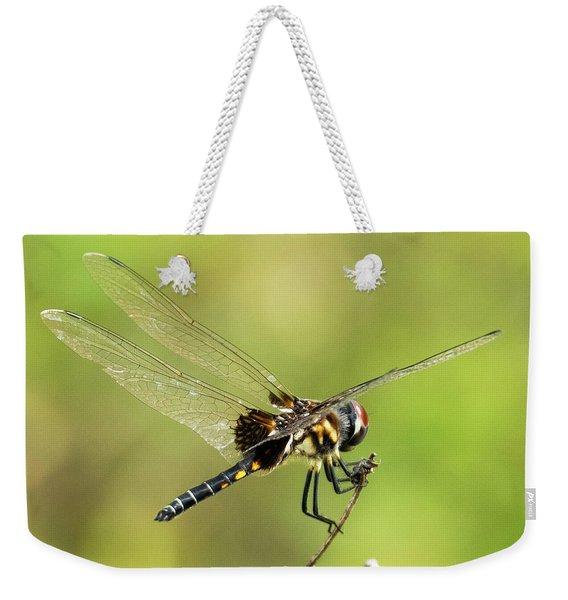 Black Saddlebags Dragonfly Weekender Tote Bag