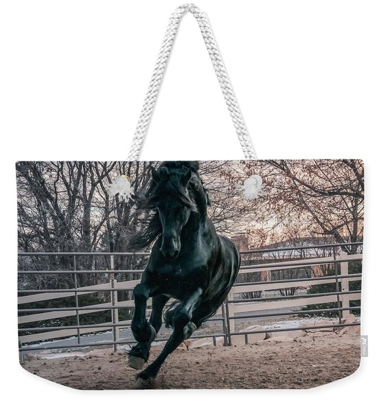 Black Stallion Cantering Weekender Tote Bag