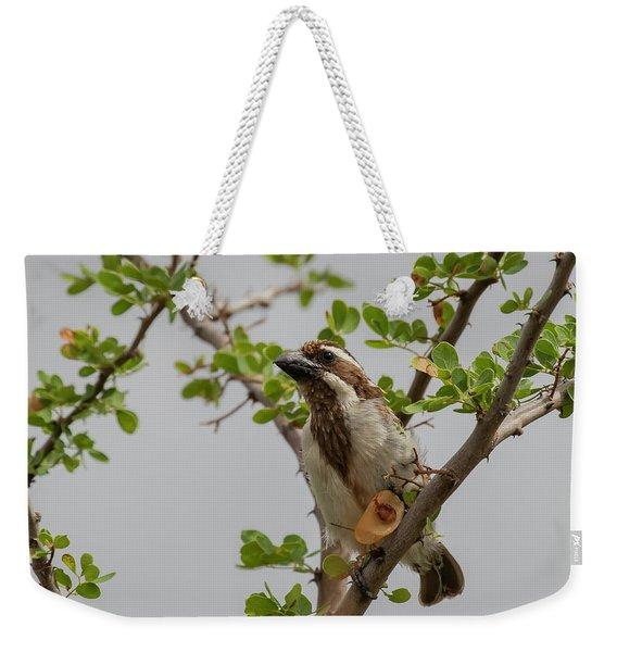 Black-throated Barbet Weekender Tote Bag