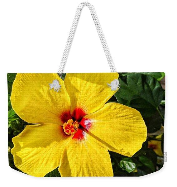 Bloom And Shine Weekender Tote Bag