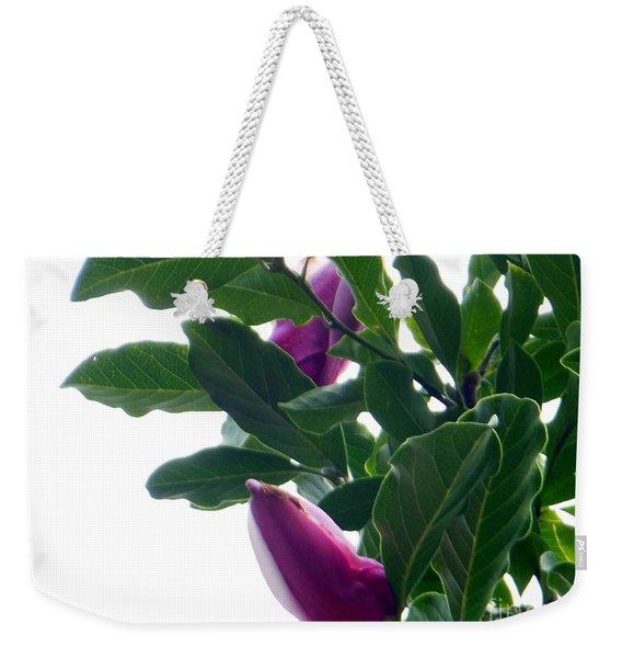 Blossoming Magnolias Weekender Tote Bag
