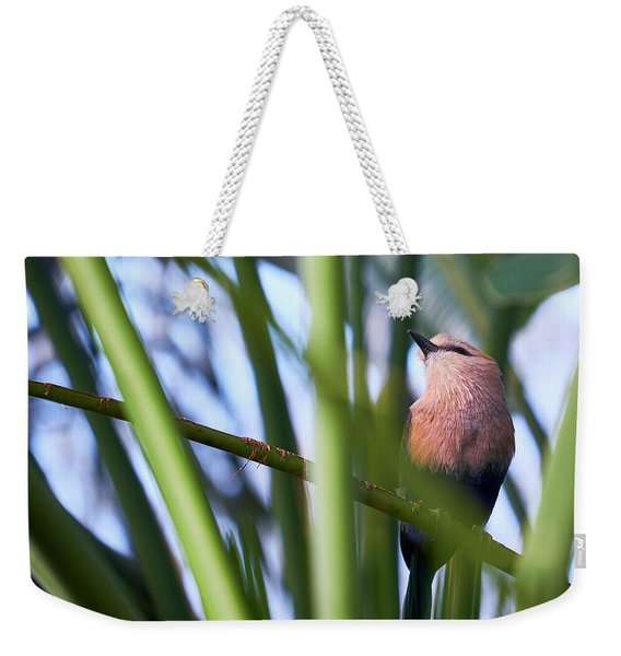 Weekender Tote Bag featuring the photograph Blue-bellied Roller by Whitney Goodey